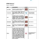 SPHN_Glossary_visual